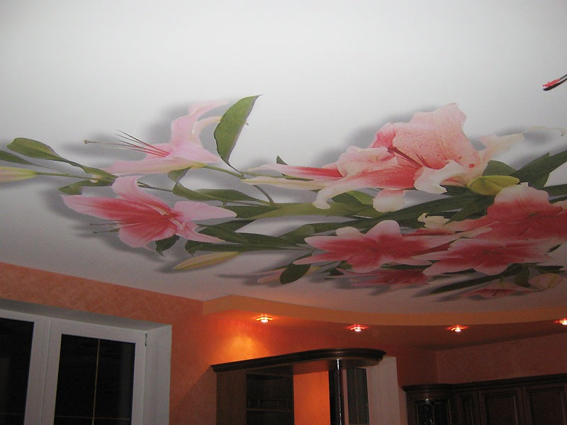 Дизайн потолков фото своими руками